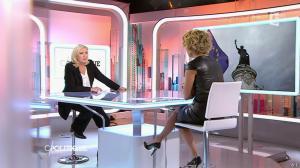 Caroline Roux dans C Politique - 11/10/15 - 019