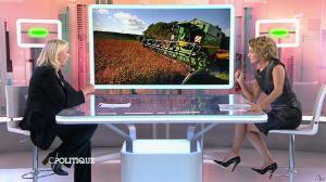 Caroline Roux dans C Politique - 11/10/15 - 088