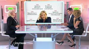 Caroline Roux dans C Politique - 11/10/15 - 166