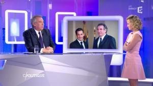 Caroline Roux dans C Politique - 14/02/16 - 08
