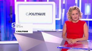 Caroline Roux dans C Politique - 15/05/16 - 02