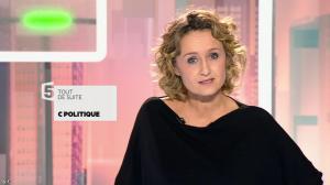 Caroline Roux dans C Politique - 15/11/15 - 02