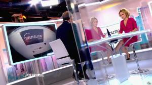 Caroline Roux dans C Politique - 18/10/15 - 19