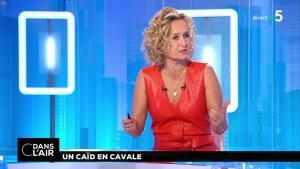 Caroline Roux dans C dans l'Air - 02/07/18 - 01