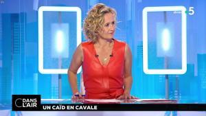 Caroline Roux dans C dans l'Air - 02/07/18 - 04