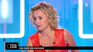 Caroline Roux dans C dans l'Air - 02/07/18 - 05