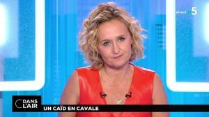Caroline Roux dans C dans l'Air - 02/07/18 - 06