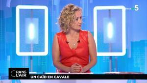 Caroline Roux dans C dans l'Air - 02/07/18 - 10