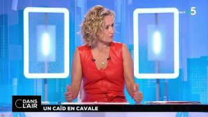 Caroline Roux dans C dans l'Air - 02/07/18 - 11