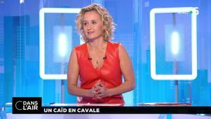 Caroline Roux dans C dans l'Air - 02/07/18 - 14