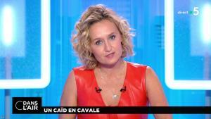 Caroline Roux dans C dans l'Air - 02/07/18 - 17