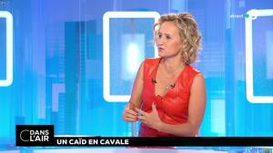 Caroline Roux dans C dans l'Air - 02/07/18 - 24