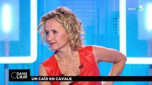 Caroline Roux dans C dans l'Air - 02/07/18 - 32