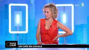 Caroline Roux dans C dans l'Air - 02/07/18 - 33