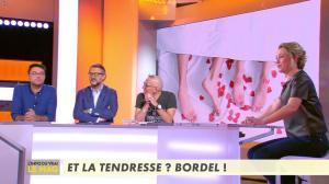 Isabelle Moreau dans l'Info du Vrai le Mag - 21/01/19 - 01