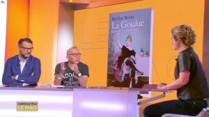 Isabelle Moreau dans l'Info du Vrai le Mag - 21/01/19 - 05
