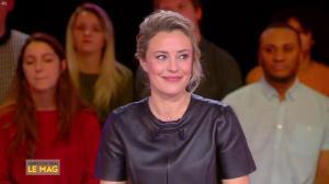 Isabelle Moreau dans l'Info du Vrai le Mag - 21/01/19 - 06