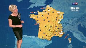 Evelyne Dhéliat à la Météo de 20h - 15/04/14 - 01