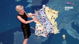 Evelyne Dhéliat à la Météo de 20h - 24/04/14 - 01