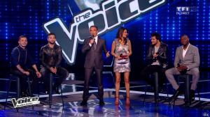 Karine Ferri dans The Voice - 03/05/14 - 05