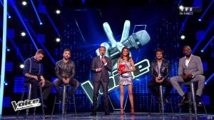 Karine Ferri dans The Voice - 03/05/14 - 08