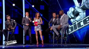 Karine Ferri dans The Voice - 03/05/14 - 10