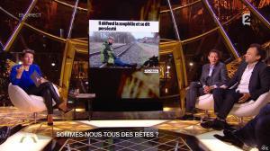 Alessandra Sublet dans Un Soir à la Tour Eiffel - 01/04/15 - 10