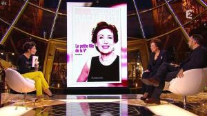 Alessandra Sublet dans un Soir à la Tour Eiffel - 06/05/15 - 02