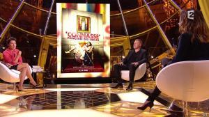 Alessandra Sublet dans Un Soir à la Tour Eiffel - 22/04/15 - 10