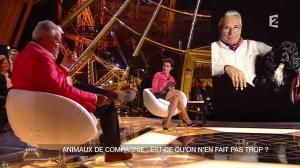 Alessandra Sublet dans Un Soir à la Tour Eiffel - 22/04/15 - 18