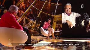 Alessandra Sublet dans Un Soir à la Tour Eiffel - 22/04/15 - 19