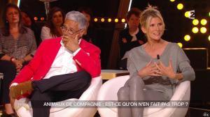Hélène Gateau dans Un Soir à la Tour Eiffel - 22/04/15 - 16