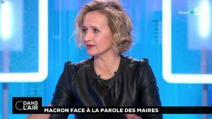 Caroline Roux dans C dans l'Air - 15/01/19 - 06
