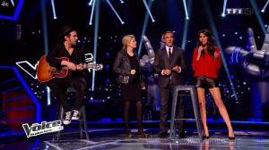Karine Ferri dans The Voice - 22/03/14 - 08