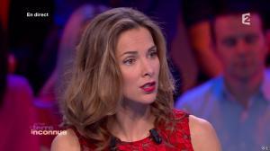 Mélissa Theuriau dans Retour de Terre Inconnue - 21/01/14 - 03