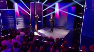 Virginie Guilhaume dans la Fete de la Chanson Francaise - 29/11/13 - 04
