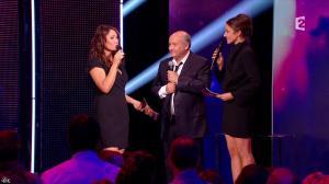 Virginie Guilhaume dans la Fete de la Chanson Francaise - 29/11/13 - 16
