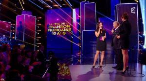 Virginie Guilhaume dans la Fete de la Chanson Francaise - 29/11/13 - 18
