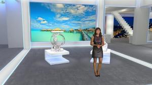 Estelle Denis dans Euro Millions - 06/03/15 - 10