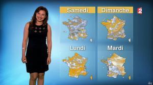 Anaïs Baydemir à la Météo de 13h - 14/04/16 - 02