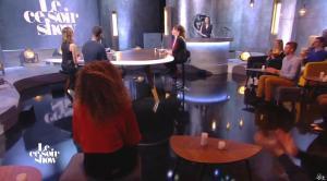 Isabelle Ithurburu dans le Ce Soir Show - 30/12/15 - 04