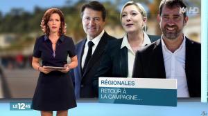 Nathalie Renoux dans le 12-45 - 22/11/15 - 05