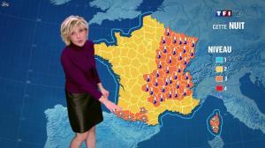Evelyne Dhéliat dans la Meteo de 20h - 02/02/12 - 02
