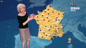 Evelyne Dhéliat dans la Meteo de 20h - 08/02/12 - 02
