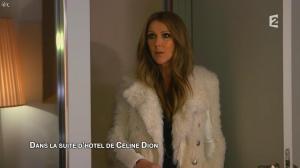 Céline Dion dans Céline Dion c est Votre Vie - 16/11/13 - 001
