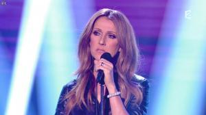 Céline Dion dans Céline Dion c est Votre Vie - 16/11/13 - 009