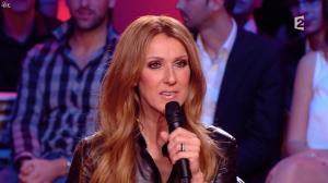 Céline Dion dans Céline Dion c est Votre Vie - 16/11/13 - 026