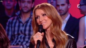 Céline Dion dans Céline Dion c est Votre Vie - 16/11/13 - 031