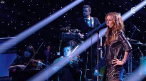 Céline Dion dans Céline Dion c est Votre Vie - 16/11/13 - 045