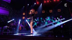 Céline Dion dans Céline Dion c est Votre Vie - 16/11/13 - 055
